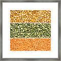 Legumes Triptych Framed Print