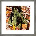 Lichen Castle In Autumn Leaves Framed Print
