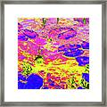 Lily Pads And Koi 11 Framed Print