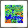 Lily Pads And Koi 14b Framed Print
