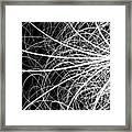 Linear Abstract 2 Framed Print