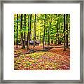 Linn Run Pennsylvania 2 - Paint Framed Print