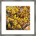 Little Yellow Flowers Framed Print