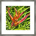 Living Art Framed Print