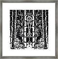 Lost In A Bamboo Jungle Framed Print