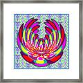 Lotus Flower Stunning Colors Abstract  Artistic Presentation By Navinjoshi Framed Print