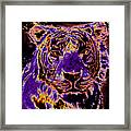Lsu Tiger Framed Print