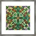 Lucky Day  Mandala Framed Print