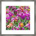 Magenta Floral Pattern Framed Print