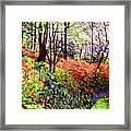 Magic Flower Forest Framed Print