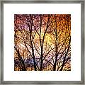 Magical Colorful Sunset Tree Silhouette Framed Print