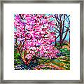 Magnolia - Early Spring Framed Print
