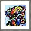 Mastiff Warrior Framed Print