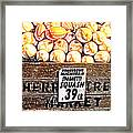 Michigan Squash For Sale Framed Print