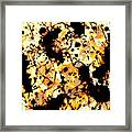 Microscopic Insecticide 3 Framed Print