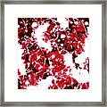 Microscopic Insecticide 4 Framed Print