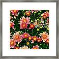 Mini Mums Autumn Tones By Kaye Menner Framed Print