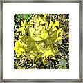 Mistress of Autumn Framed Print