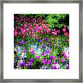 Mixed Flowers And Tulips Framed Print