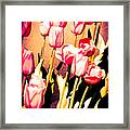 Molten Gold Tulips Framed Print
