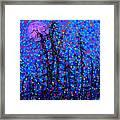 Moonlit Forest Framed Print