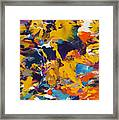 Morning Madness Framed Print