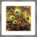 Mosaic Feathers Framed Print