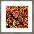 Mums The Word Framed Print