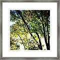 Mystical Tree Framed Print