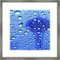 Needle In Rain Drops H006 Framed Print