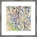 Nerve Cells Santiago Ramon Y Cajal Framed Print