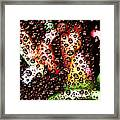 New Year Droplets Ph002 Framed Print