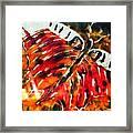 Night Butterfly Framed Print