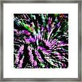 Nite Blooms Framed Print