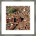 Nuts And Bolts Rusted Framed Print