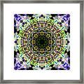Oa-5134 Framed Print