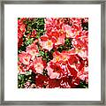 Office Art Rose Garden Landscape Art Pink Roses Giclee Baslee Troutman Framed Print
