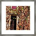 Old Stone House In Provence Framed Print