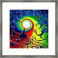 Om Tree Of Life Meditation Framed Print