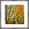 On A Country Road 5 - Paint Framed Print