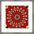 Orchid Kaleidoscope 9 Framed Print
