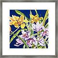 Orchids In Blue Framed Print by Lucy Arnold