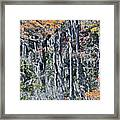 Orton Pond Winter Framed Print