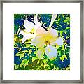 Paint Me In Water Color Said The Lilies To The Artist Framed Print