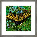 Painted Yellow Swallowtail Framed Print