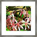 Painterly Effects Framed Print