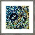 Panther Wheel Abstract Framed Print