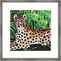 Paper Mache Leopard Framed Print