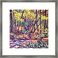 Path Near Pandapas Framed Print