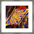 Peacock Parts Framed Print